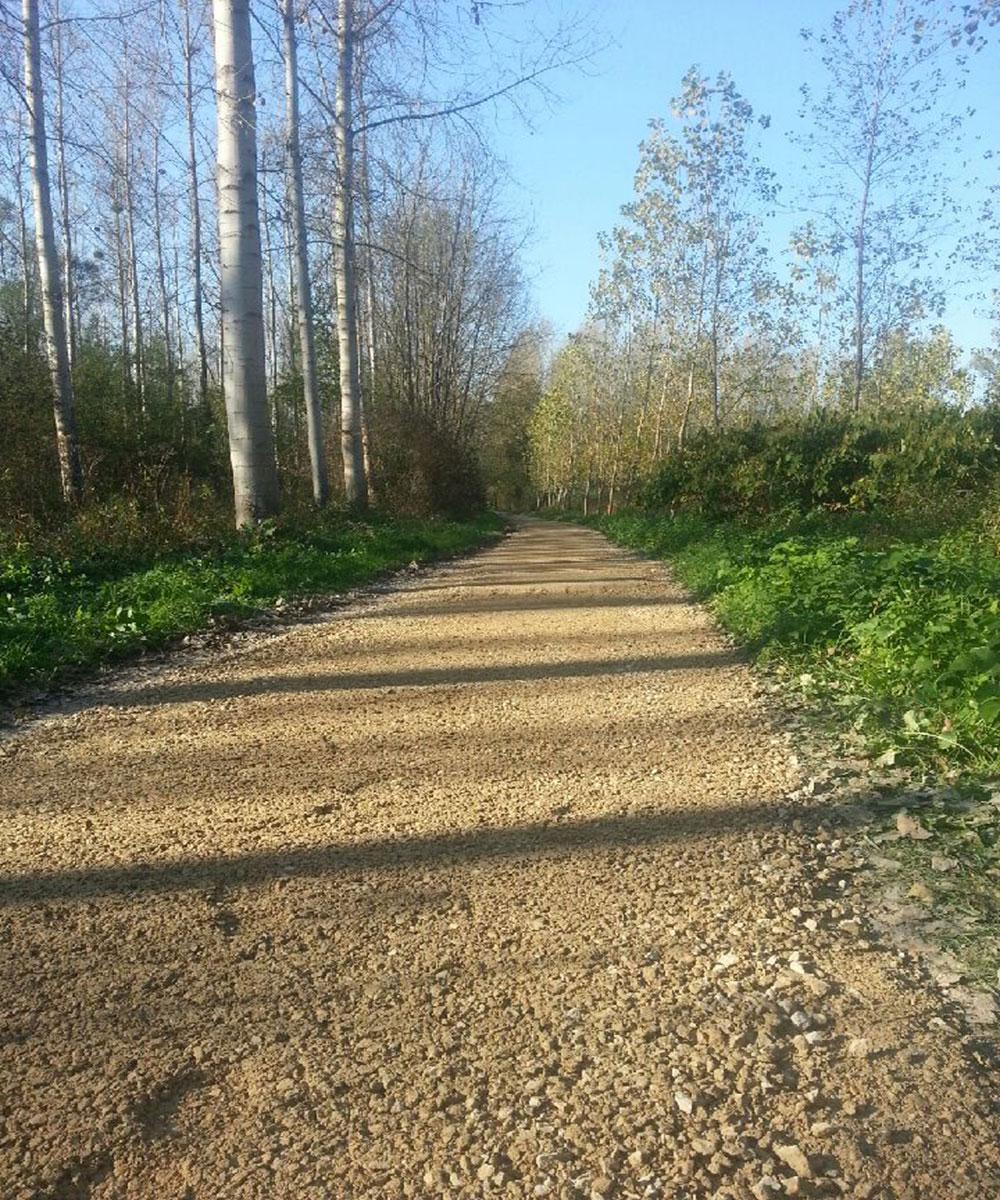 -entretien-des-chemins-ruraux